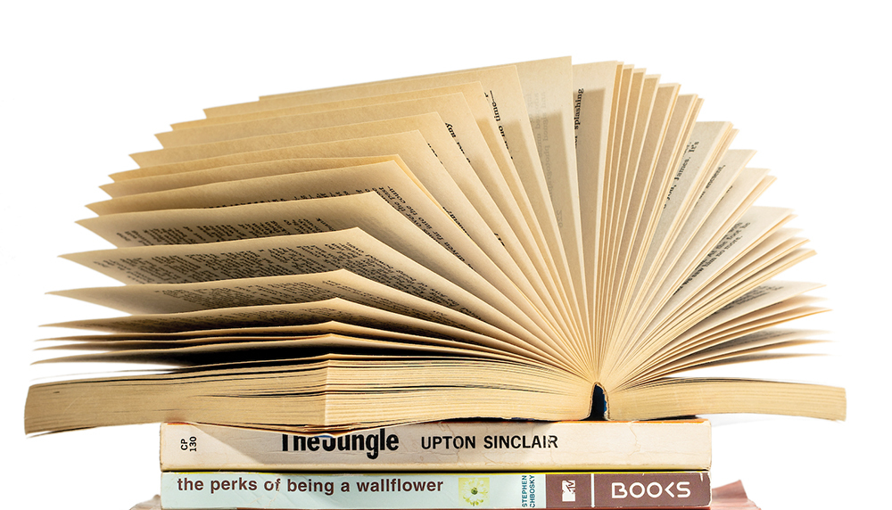 Book Stack 4429