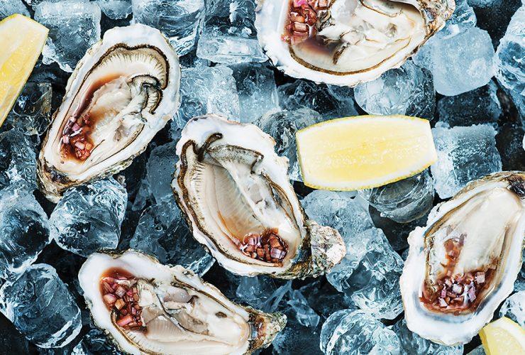 Sep List Oyster