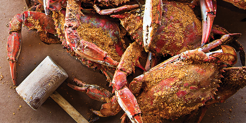 The Essential Crab House Guide Baltimore Magazine