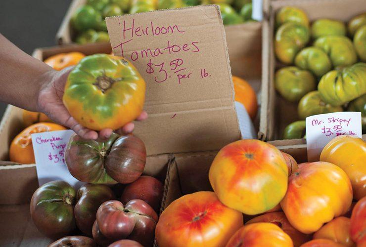 Launch Jfx Farmers Market