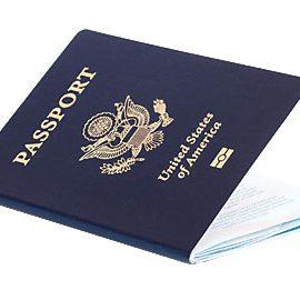 LynneBrick-passport