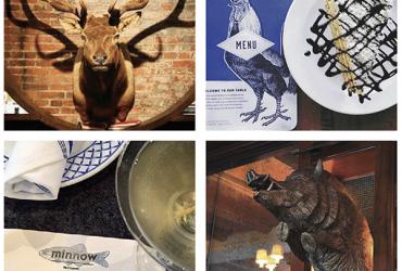 restaurant animal names