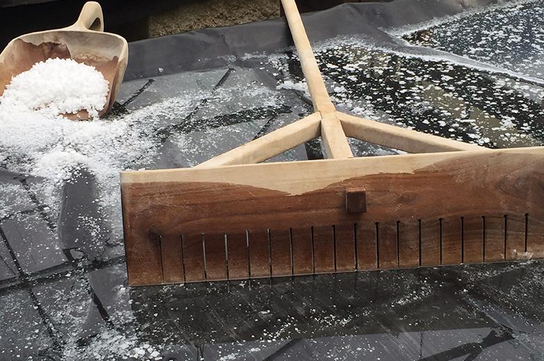 Salt-tools.jpg#asset:40739:url