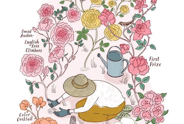 Artwork Roses Send