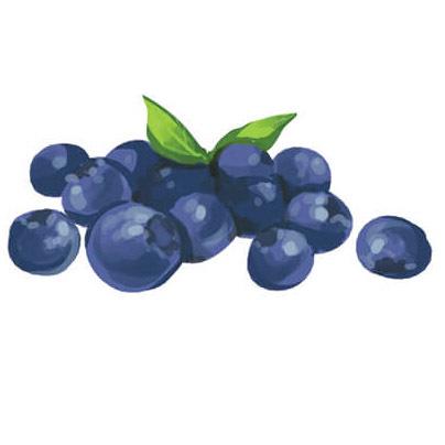 Bluebs.jpg#asset:120576