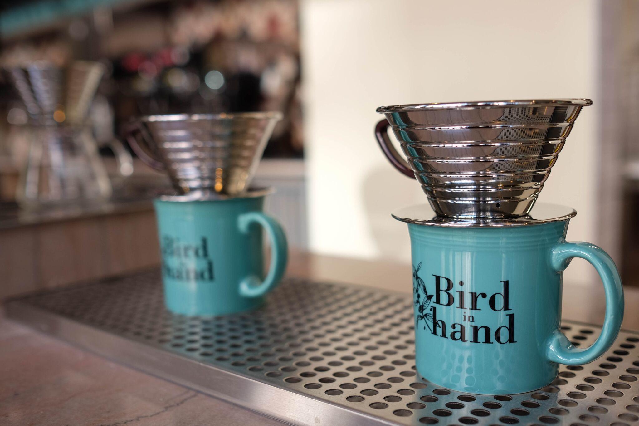 Birdin Hand2