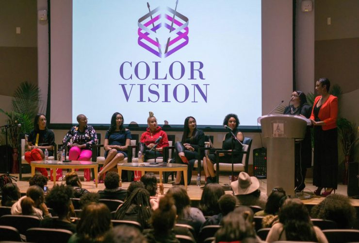 Color Vision Panel