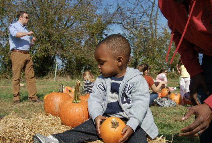 Fall Famiily Festivals Irvine Pumpkin
