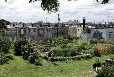 Pigtown Community Garden 720