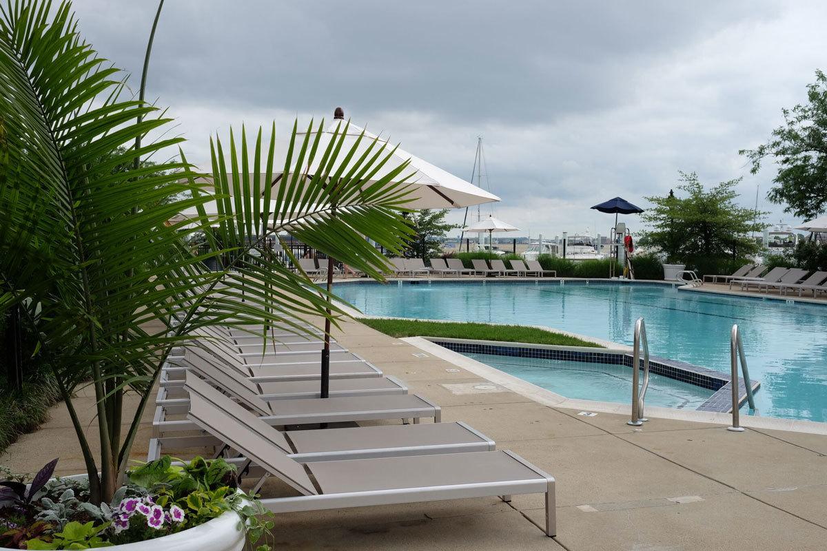 pool-swim-club.jpg#asset:62046