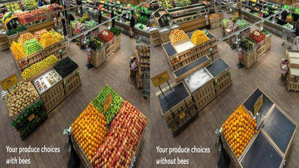 Supermarket Without Bees