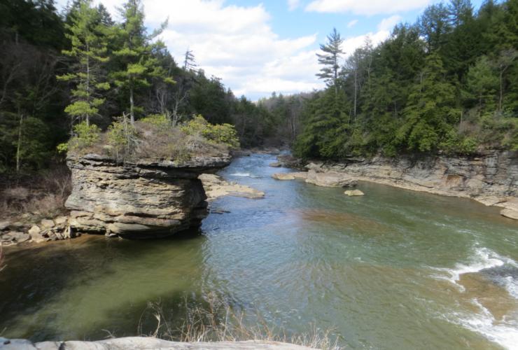 Swallow Falls Hikes