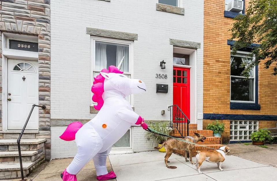 unicorn-2.jpg#asset:69355