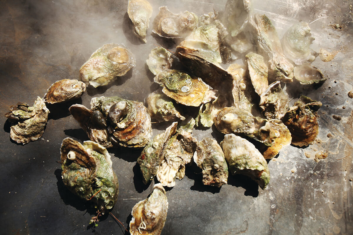 Oysters Getty Images 166649266